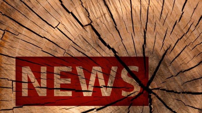 News Holzonline
