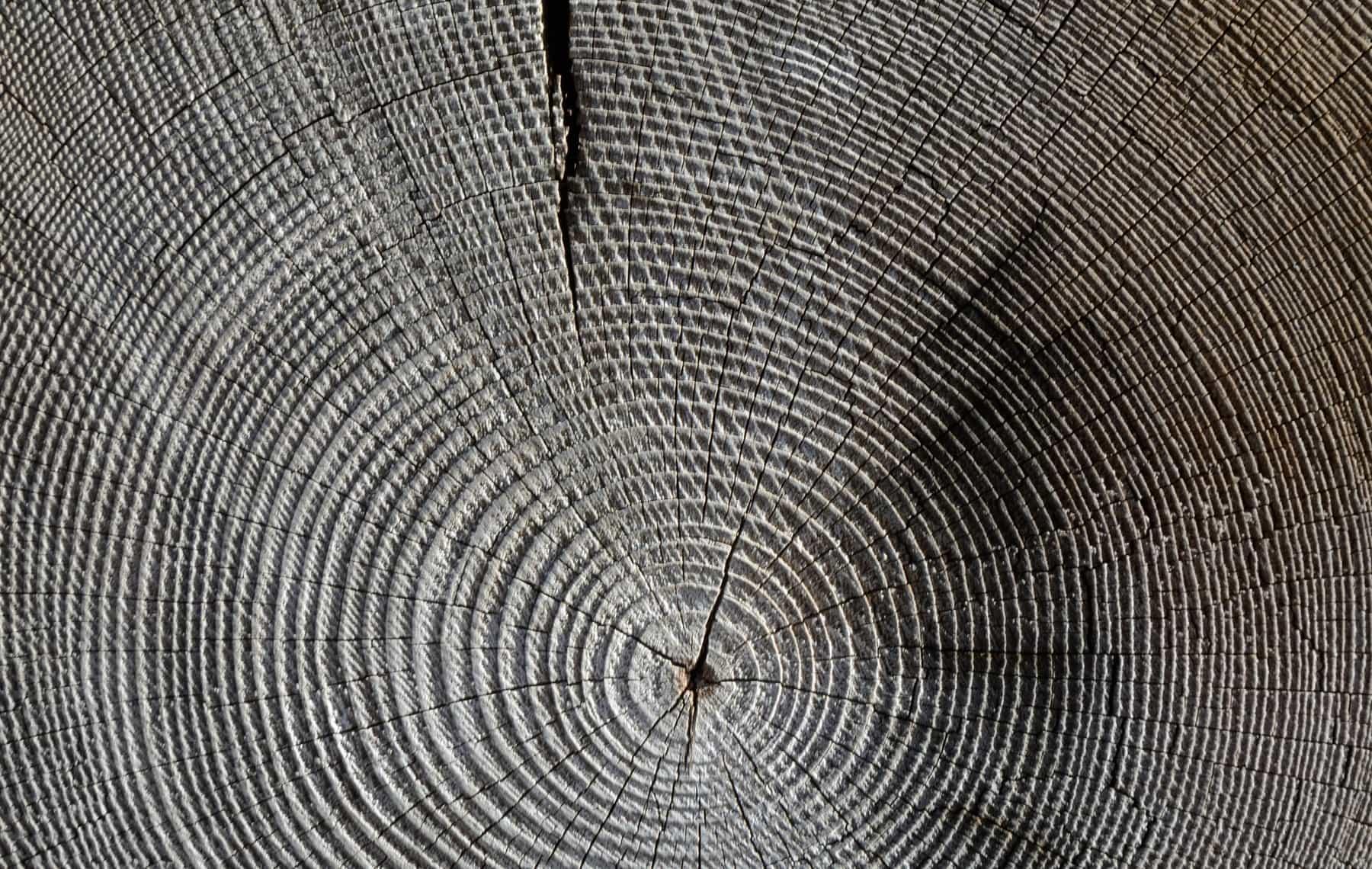 wood-618673