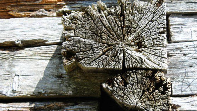 Verwittertes Holz. (Beispielbidl)