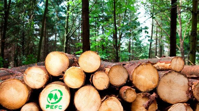 66 Prozent der gesamten Waldfläche in Deutschland sind bereits PEFC-zertifiziert.