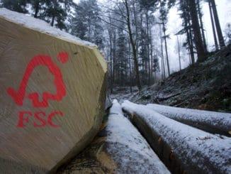 FSC ist in Baumärkten gut vertreten.